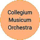 Collegium Musicum Orchestra